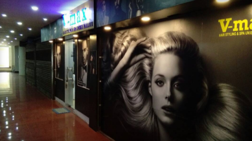 V-Max Hair Styling Parlour unisex Parlour L''oreal